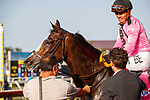 DEL MAR, CA  JULY 16: #8 Flashiest, ridden by Abel Cedillo, returns to the connections after winning the Runhappy Oceanside Stakes with four in a line, on July 16, 2021 at Del Mar Thoroughbred Club in Del Mar, CA<br /> (Photo by Casey Phillips/ Eclipse Sportswire/ CSM)