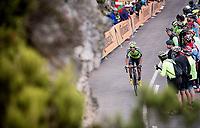 Mikel Bizkarra (ESP/Euskadi Basque Country - Murias) up the Alto de La Cubilla<br /> <br /> Stage 16: Pravia to Alto de La Cubilla. Lena (144km)<br /> La Vuelta 2019<br /> <br /> ©kramon