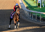 April 27, 2021: Coach exercises in preparation for the Kentucky Oaks at Churchill Downs on April 27, 2021 in Louisville, Kentucky. John Voorhees/Eclipse Sportswire/CSM