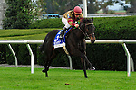 17 October 2009: Hot Cha Cha with James Graham up takes the G1Queen Elizabeth Stakes at Keeneland Race Course in Lexington, Kentucky.