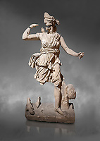 Roman statue of Hunting Artemis .Marble. Perge. 2nd century AD. Inv no .Antalya Archaeology Museum; Turkey.  Against a grey background