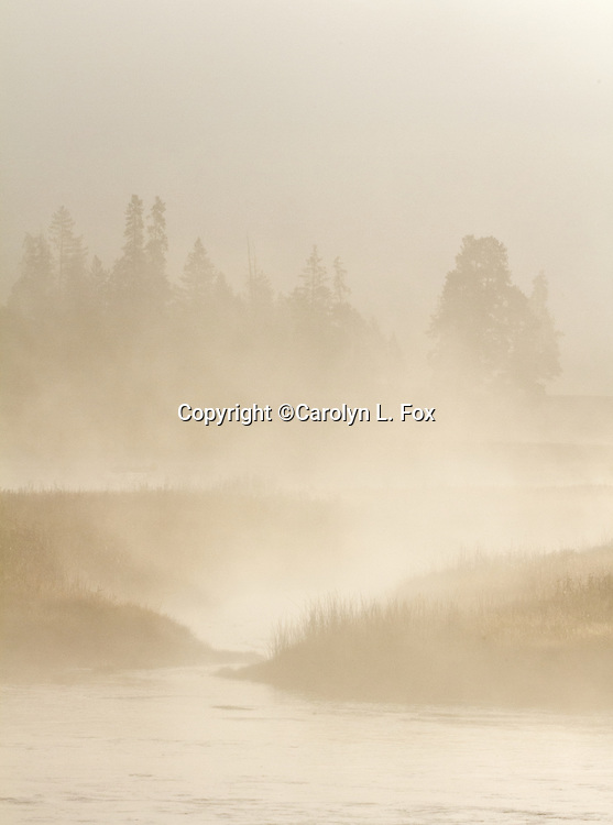Steam rises off the Madison River in yellowstone national park.