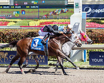 HALLANDALE BEACH, FL - FEB 17:Delta Bluesman #7 trained by Jorge Navarro with Irad Ortiz, Jr. in the irons wins the $60,000 Rail Splitter Claiming Stakes at Gulfstream Park on February 17, 2018 in Hallandale Beach, Florida. (Photo by Bob Aaron/Eclipse Sportswire/Getty Images)