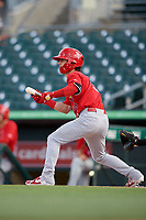 Palm Beach Cardinals shortstop Kramer Robertson (3) squares around to bunt during a game against the Jupiter Hammerheads on August 4, 2018 at Roger Dean Chevrolet Stadium in Jupiter, Florida.  Palm Beach defeated Jupiter 7-6.  (Mike Janes/Four Seam Images)