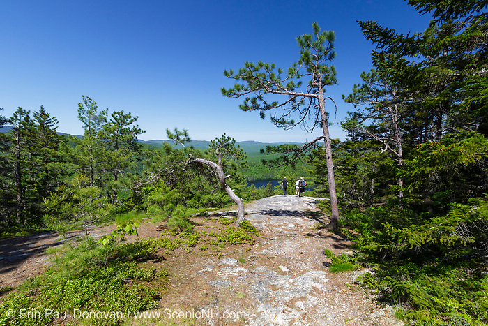 Horseshoe Pond from along the Conant Trail in Maine during the spring months. This loop trail travels over Pine Hill and Lord Hill. The Chatham Trails Association maintains this trail.