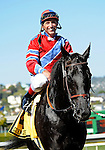 10 April 10: Bold Chieftain (no. 4), ridden by Russell Baze and trained by William Morey Jr., wins the grade 2 San Francisco Mile Stakes for four year olds and upward at Golden Gate Fields in Berkeley, California.