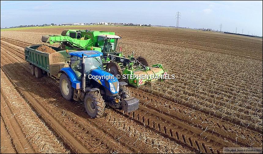 Photo by ©Stephen Daniels  22/10/2014<br /> AVR Potato Harvester & New Holland Tractor, Fosdyke, Lincolnshire