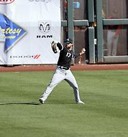 Luis Gonzalez - Chicago White Sox 2021 spring training (Bill Mitchell)