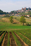 Italien, Piemont, Region Monferrato: Weinberge und Weinort Cereseto | Italy, Piedmont, Region Monferrato: Cereseto