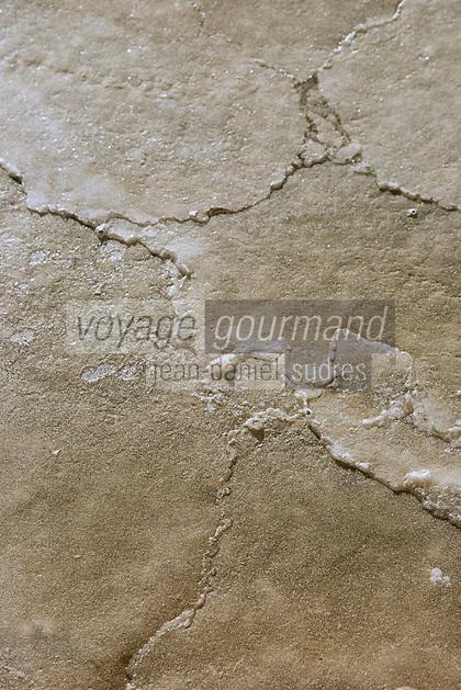 Europe/France/Pays de la Loire/44/Loire Atlantique/Guérande: Les marais salants de Guérande  - Récolte de la fleur de sel //  France, Loire Atlantique, Guerande, Salt marshes of Guerande Harvest of sea salt