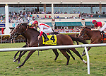 January 02, 2016: Life Imitates Art with jockey Joel Rosario up gets up late to win the Dania Beach (G3T) for 3 year olds at Gulfstream Park. Gulfstream Park, Hallandale Beach (FL). Arron Haggart/ESW/CSM