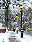 02.09.2013 Cranford Snow