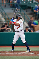 Brooklyn Cyclones Raul Beracierta (25) at bat during a NY-Penn League game against the Tri-City ValleyCats on August 17, 2019 at MCU Park in Brooklyn, New York.  Brooklyn defeated Tri-City 2-1.  (Mike Janes/Four Seam Images)