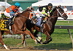 09 May 15: As the horses pass the stands for the first time, Payton d'Oro and Terry Thompson take the early lead from Stage Trick and Javier Castellano in the grade 2 Black-Eyed Susan Stakes at Pimlico Race Track in Baltimore, Maryland.