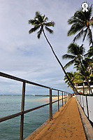 Footbridge and palm trees, Waikiki beach, Footbridge and palm trees, Waikiki beach, Honolulu, Oahu Island, Usa  (Licence this image exclusively with Getty: http://www.gettyimages.com/detail/85985788 )