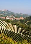 Italien, Piemont, Langhe, Barolo: beruehmter Weinbauort, Hintergrund La Morra | Italy, Piedmont, Langhe, Barolo: famous wine growing village, background La Morra
