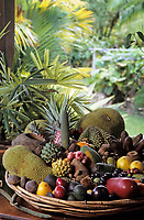 """Océanie/Australie/Queensland/Env. de Mossman: Plateau de fruits exotiques chez Alan et Suzan Carle au """"Botanical Ark"""" au milieu de la Rainforest"""