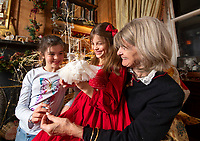 BNPS.co.uk (01202 558833)<br /> Pic: PhilYeomans/BNPS<br /> <br /> Dinah's granddaughter's Franka(l-9) and Carla(7) lend a hand...<br /> <br /> Fairy Grandmother - Bespoke fairy maker Dinah Nicholson gets a helping hand from grandchildren Franka, Carla and Daisy this Christmas...<br /> <br /> Described as a 'Living National Treasure' by Country Life magazine her unique creations have even been supplied as wedding gifts for the bridesmaids at Royal weddings.<br /> <br /> Each of her 4159 creations so far have been logged in a fairy ledger, and the £60 cost has never been increased as 'I want everyone to be able to afford one'.