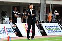 2011 J.League : Shimizu S-Pulse 2-1 Albirex Niigata