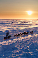 Matt Failor runs on the Bering Sea at sunset on the trail heading toward the finish at Nome on Wednesday March 14th during the 2018 Iditarod Sled Dog Race.  <br /> <br /> Photo by Jeff Schultz/SchultzPhoto.com  (C) 2018  ALL RIGHTS RESERVED