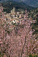 Europe/France/Languedoc-Roussillon/66/Pyrénées-Orientales/Eus: Le village et le verger
