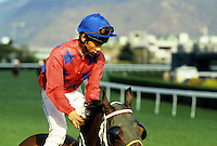 Jockey. Hong Kong. China.  Sha Tin Race Course.