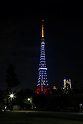 Tokyo Tower Light-up Exhibition