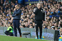 Everton Manager Roberto Martinez and Swansea City Head Coach Francesco Guidolin during the Barclays Premier League match between Everton and Swansea City played at Goodison Park, Liverpool