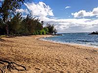 A beautiful beach on the north shore of Oahu, Hawaii.