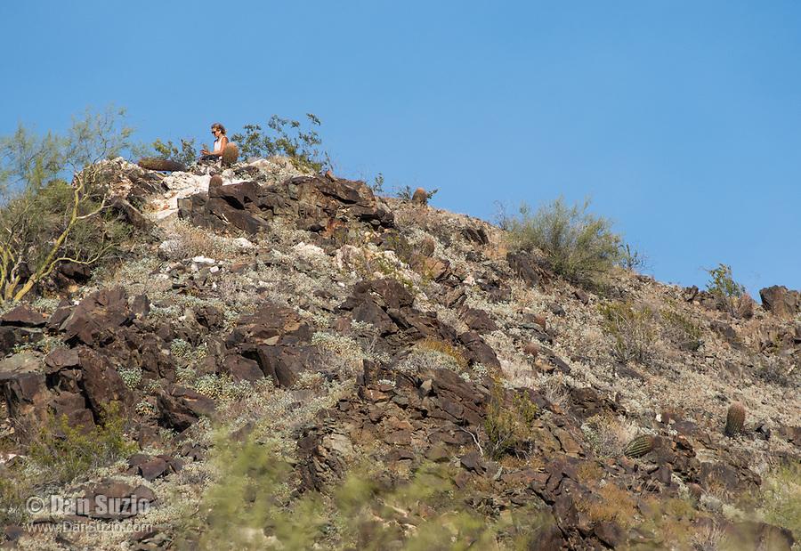 A hiker takes a break in Dreamy Draw Park, part of the Phoenix Mountains Preserve near Phoenix, Arizona