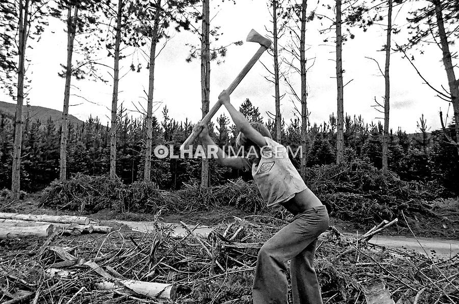 Crinaça trabalhando em corte de madeira, Minas Gerais. 1985.Foto de Juca Martins.