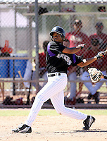 Eliezer Mesa / Colorado Rockies 2008 Instructional League..Photo by:  Bill Mitchell/Four Seam Images
