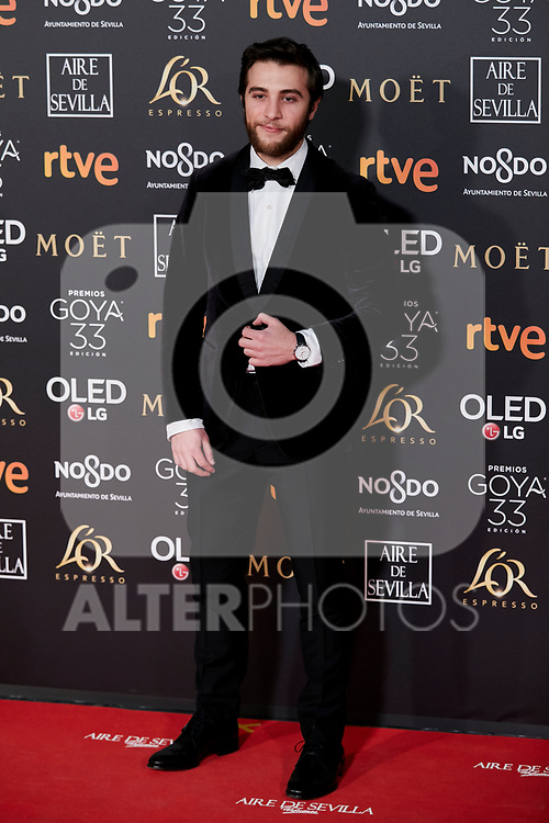 Pol Monen attends to 33rd Goya Awards at Fibes - Conference and Exhibition  in Seville, Spain. February 02, 2019. (ALTERPHOTOS/A. Perez Meca)