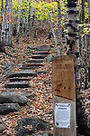 Emery Path in the Fall, Acadia National Park, Maine, USA