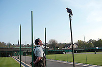 Wayne Davies with  his hawk Rufus. He is employed to keep pigeons away from Wimbledon's courts at The All England Lawn Tennis Club (AELTC), London....