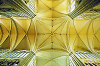 Amiens Cathedral: detail of nave vaulting. Gothic design