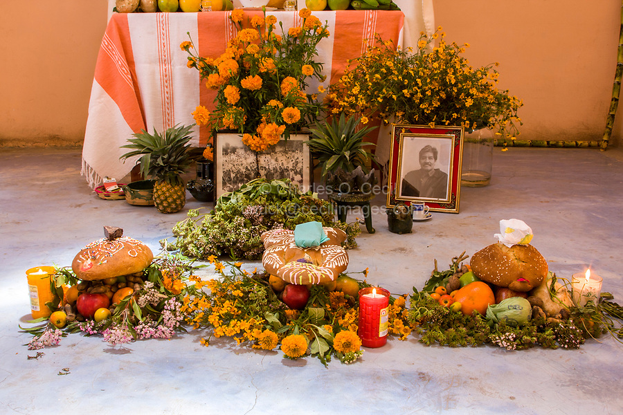 Matatlan, Oaxaca; Mexico; North America.  Day of the Dead Celebration.  Offerings in front of Family Altar.  Bread of the dead (pan de muertos), oranges, beer, coffee, bananas, chocolate, incense. apple, photos.