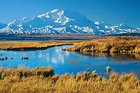 Denali and tundra pond in brown autumn grasses, Denali, Denali National Park Alaska
