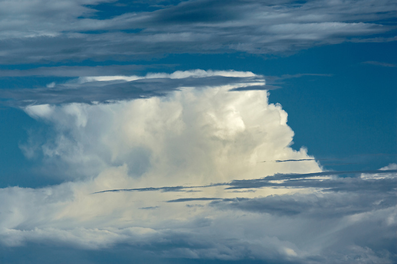 Large cumulous thunder cloud over the Palouse, Washington.