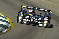 Petit Le Mans, Road Atlanta, Brazelton,GA,USA .30 September,2000  copyright©F.Peirce Williams 2000.The #31 DAMS Cadillac LMP..