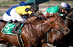 ARCADIA, CA - FEBRUARY 10: Kantha with Flavien Prat wins the San Vicente Stakes at Santa Anita Park on February 10, 2018 in Arcadia, California. (Photo by Chris Crestik/Eclipse Sportswire/Getty Images)