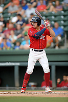 Designated hitter Tyler Esplin (25) of the Greenville Drive bats in a game against the Asheville Tourists on Friday, August 23, 2019, at Fluor Field at the West End in Greenville, South Carolina. Greenville won, 11-1. (Tom Priddy/Four Seam Images)