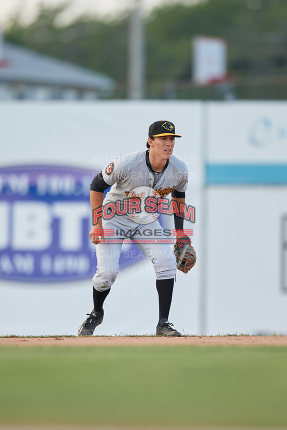 West Virginia Black Bears second baseman Tristan Gray (2) during a game against the Batavia Muckdogs on June 24, 2017 at Dwyer Stadium in Batavia, New York.  The game was suspended in the bottom of the third inning and completed on June 25th with West Virginia defeating Batavia 6-4.  (Mike Janes/Four Seam Images)