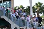 Scenes from Gulfstream Park.  Hallandale Beach, Florida 02-22-2014