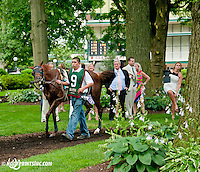Tell a Great Story before The Delaware Oaks (gr 2) at Delaware Park on 7/13/13