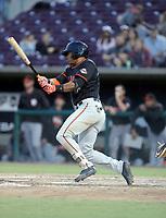 Randy Norris - 2019 San Jose Giants (Bill Mitchell)