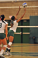 28 October 2012: Old Westbury Panthers Rayn Brown, a Freshman from Mount Vernon, NY, in action against the Yeshiva University Maccabees at SUNY Old Westbury in Old Westbury, NY. The Panthers defeated the Maccabees 3-0 in NCAA women's volleyball play. Mandatory Credit: Ed Wolfstein Photo