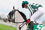 31 October 2009: Jockey Leandro Goncalves brings his ride, Under Grad, back to the owners and trainer after the first race.