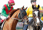 Animal Kingdom, John Velazquez up, takes part in the post parade before the136th running of the Preakness Stakes at Pimlico Race Course, May 21, 2011. (Joan Fairman Kanes/Eclipsesportswire)