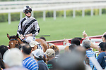 Jockey Zac Purton riding Little Giant celebrates after winning the Race 9 - Indian Ocean Handicap on 07 May 2017, at the Sha Tin Racecourse  in Hong Kong, China. Photo by Chris Wong / Power Sport Images